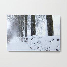 Snow fall in Huertgen Forest Metal Print