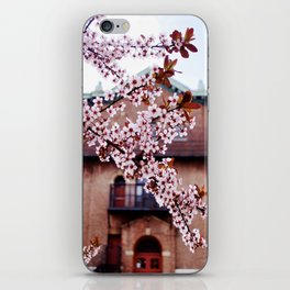 Cherry Blossoms and Chapels iPhone Skin