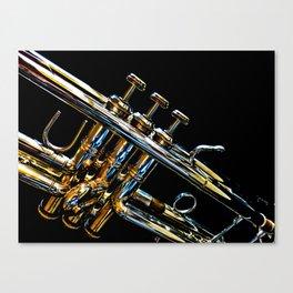 Music Bath Canvas Print