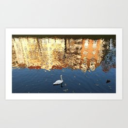 Reflector Swan II Art Print