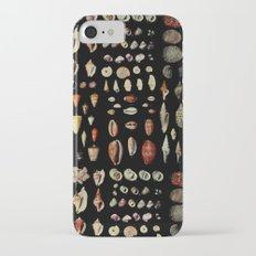 Shells Slim Case iPhone 7
