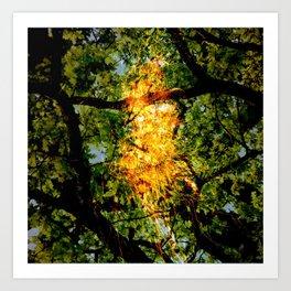 adeerpark Art Print