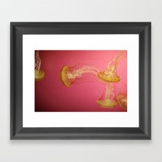 Jelly #1 Framed Art Print