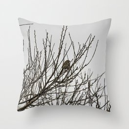 Song Sparrow Singing Throw Pillow