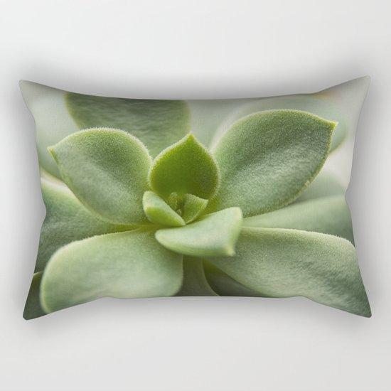 Succluent sunshine Rectangular Pillow