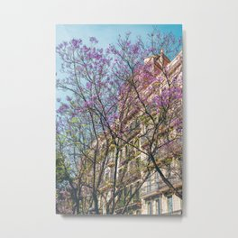Purple Flower Trees, Tree Blossom, Barcelona City, Pink Flowers, Spring Blossom, Spring In Barcelona, Nature Back To Life Metal Print