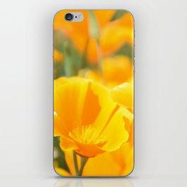 Yellow Poppies iPhone Skin