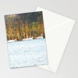 Swans in Autumn Stationery Cards