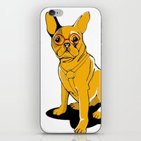frenchie iPhone & iPod Skins featuring Frenchie by andiroses