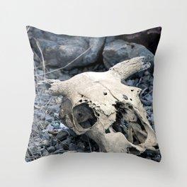 Desert Skull Two Throw Pillow