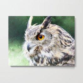 Eurasian Owl Metal Print