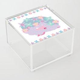 Spring Hedgehog ~ FAIRY VAR Acrylic Box