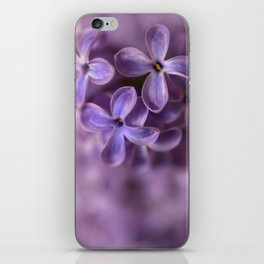 Fresh Lilac flowers iPhone Skin