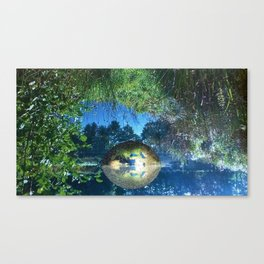 Water pond covered with dense greenery Canvas Print