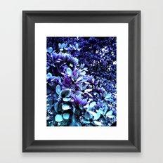 Blue Lillies Framed Art Print