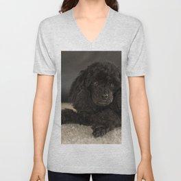 Dwarf Poodle Black Dog Unisex V-Neck