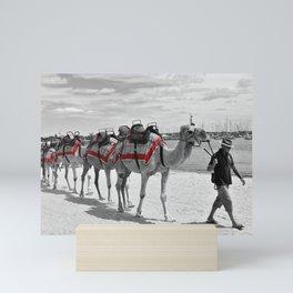 Geelong Camel Walk Mini Art Print