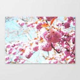 Miss Flower... Canvas Print