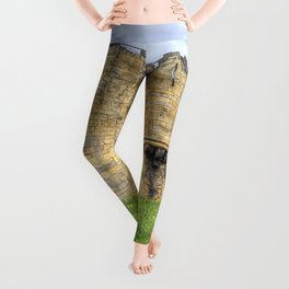 York Castle And Daffodils Leggings