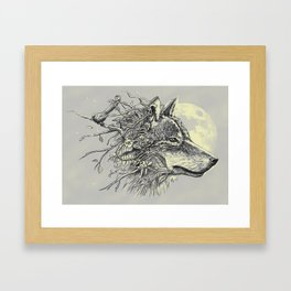 Gray Wolf Framed Art Print
