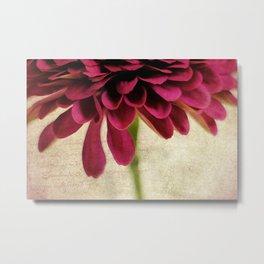 pétales de fleurs Metal Print