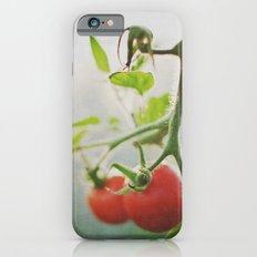 TOMATOES. Slim Case iPhone 6s
