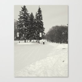 Beautiful Ice Rink Canvas Print
