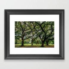 Louisiana Framed Art Print