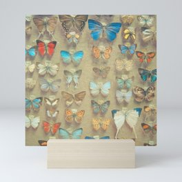 The Butterfly Collection II Mini Art Print