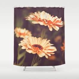 Salmon Colored Fields Shower Curtain