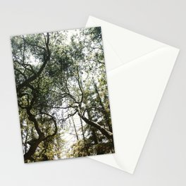 Among the Trees Stationery Cards