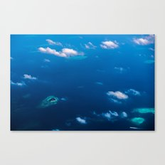Above Paradise 2 Canvas Print