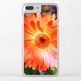 Orange Daisy Clear iPhone Case