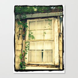 Window & Ivy Canvas Print