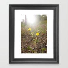 Mountain Beauty Framed Art Print