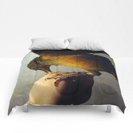 Coralito Comforters