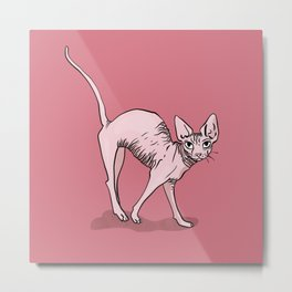 Playful Sphynx Kitty Arching Its Back - Cute Nude Cat - Rose Blush Background Metal Print