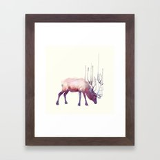 Elk // Solitude Framed Art Print