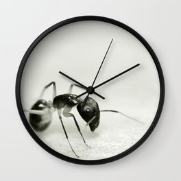 Drunken Ant Wall Clock