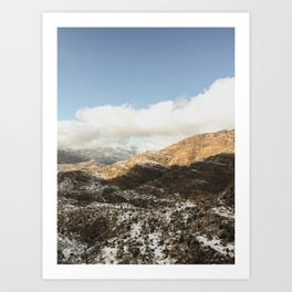 Coronado Forest  (iPhone) Art Print