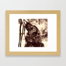 The love of a dog to man Framed Art Print
