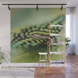 Dotted Insect Wall Mural