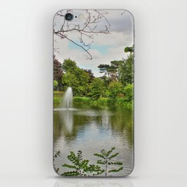 Lake Reflections iPhone Skin
