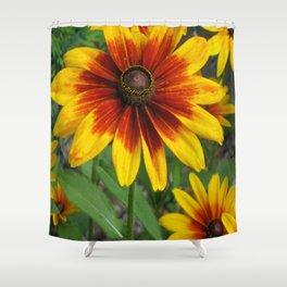 Flower | Flowers | Yellow Gaillardia Daisy | Nature Photography Shower Curtain