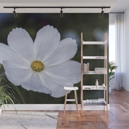 White Cosmos Wall Mural