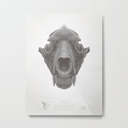 Grizzly Skull Metal Print