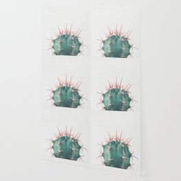 Ferocactus Wallpaper