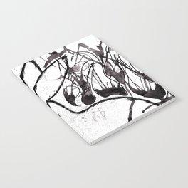 Black Rabbit Notebook