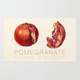 Pomegranate, Punica granatum Rug