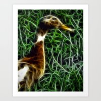 duck Art Prints featuring Duck by Phil Flaig